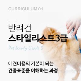 반려견 스타일리스트 3급과정