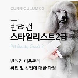 반려견 스타일리스트 2급과정